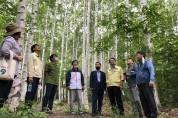 경북도, 명품숲 활용, 국내 최고 웰니스 산림관광지 조성한다
